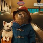 映画史上もっとも紳士なクマ!? 映画『パディントン』、特報公開